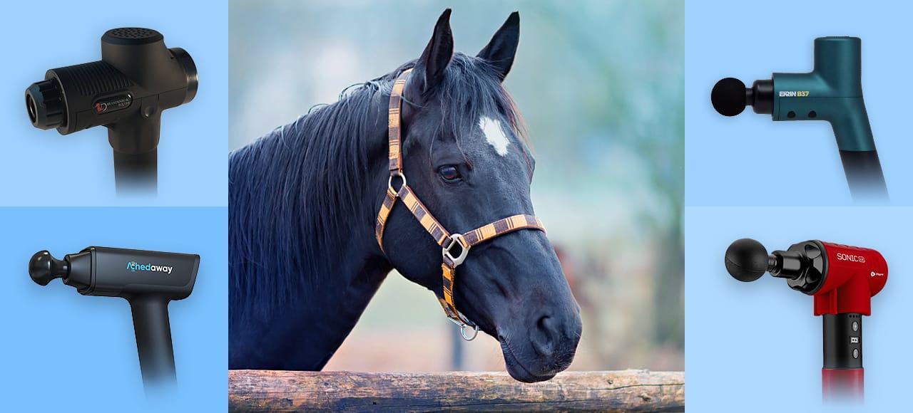 equine massage gun